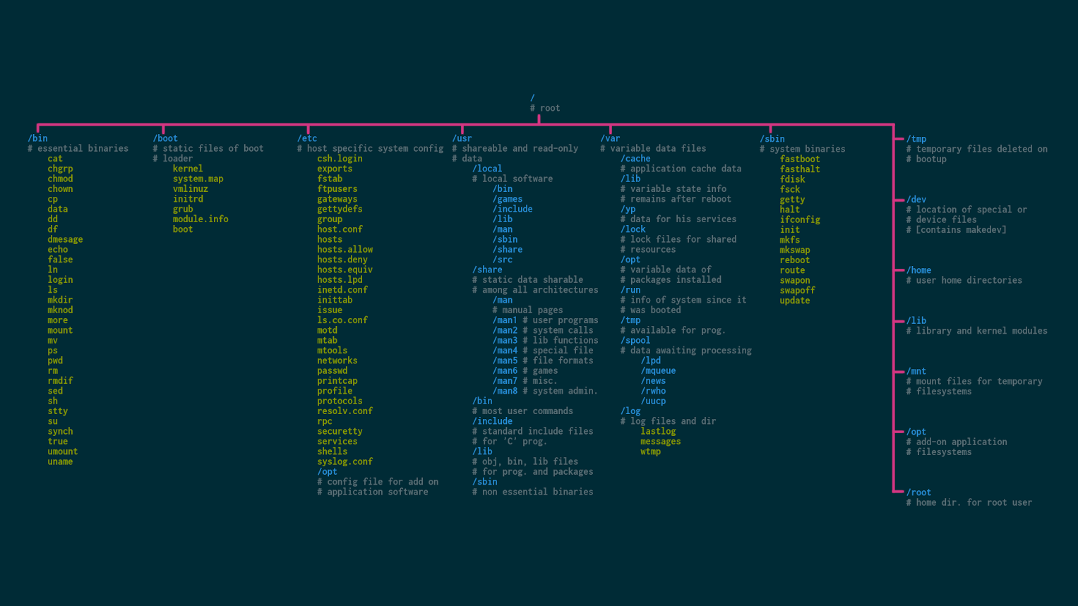 The hierarchy of the file system in Linux | MVPS net Blog | MVPS NET